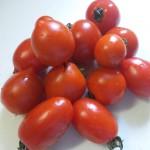 甘いトマトいろいろ