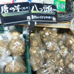 唐の芋 '上品はお味です'