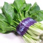 江戸野菜、葛飾の小松菜です。