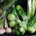 コールラビ カブのようなキャベツのような、、、生でシャキシャキ、温野菜であまーく優しいお味です。