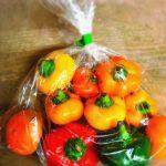 トマピー トマトの形をした新種のパプリカです。 ピーマンのような独特な苦みや匂いがほとんどないです。